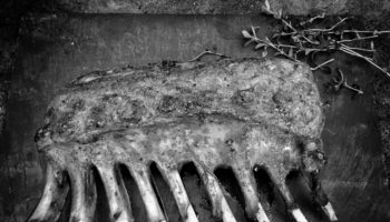 barbecue-image